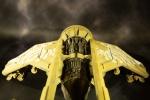 vulture back